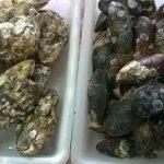 peixaria-arantes-curitiba