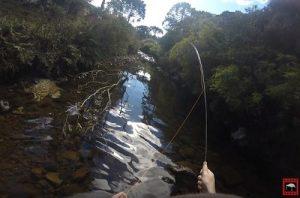 trutas-fly-fishing