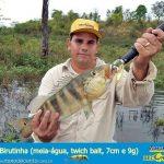 guia-pesca-ilha-solteira