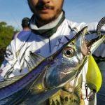 xomano-pesca