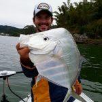 guia-pesca-porto-belo