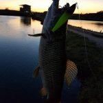 pesqueiro-vo-minda