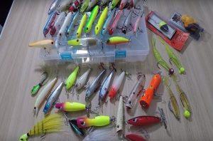 dica-equipamento-pesca-traira