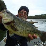 bass-braguinha