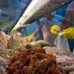 pescados-keli-mozer