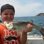 pescaria-robalo
