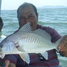 pescarias-zelao