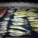 pescaria-barco-alto-mar