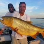 dourado-pescaria