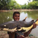 pesque-pague-ribeiro