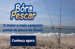 site-anuncios-pesca