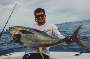 atum-amarelo