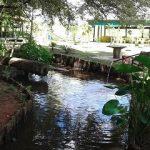 pesque-pague-recanto-verde
