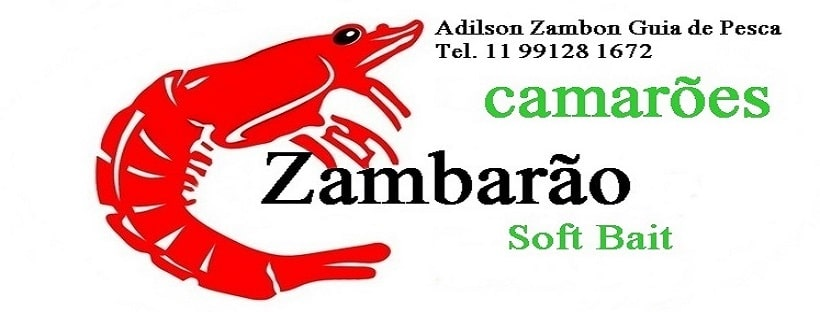 adilson-zambon