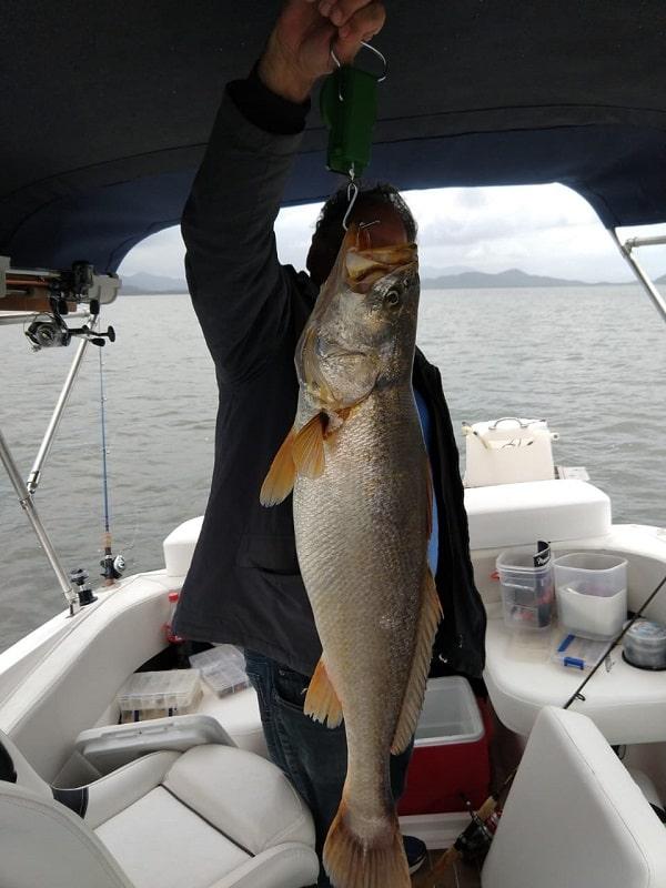 pescada-calafate